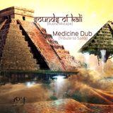 Medicine Dub (Tribute to Sahaj) - Sounds of Kali (Rudra Mixtape)