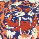 Skateshop Radio: Episode 18 - Tiger Days