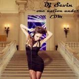 DjSevin - One Nation Under EDM ..pt.1