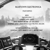 Bluetown Electronica live show 12.03..17