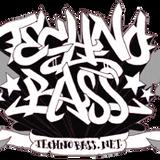 DJ Di'jital - TechnoBass.net Feature - 2009-07
