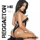 VJ Mauro - Reggaeton Mix Vol.1