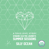 a true love story :: summer sessions
