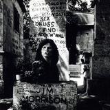 Wreck Jim Morrison 1130