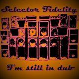 Selector Fidelity - I'm still in dub