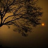 VA - Followed the Sun (Mixed by MiCh'iGun)