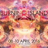 Ark 2016 Gili Air Burning Island Festival Mixset
