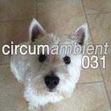 Circumambient 031