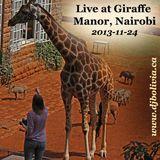 DJ Bolivia - Live at Giraffe Manor (Nairobi)