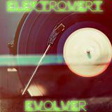 ELEKTROVERT EVOLVER VOL 1