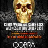 COBRA WEDNESDAY: 21/11/12 - T&E PREVIEW
