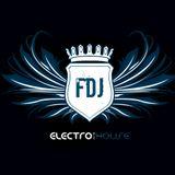 Electro House Mix - Frank
