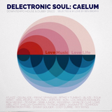 Delectronic Soul - Caelum - Downtempo House & Dubby Disco