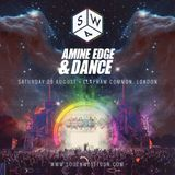 2015.08.29 - Amine Edge & DANCE @ Southwest Four Festival - Clapham Common, London, UK