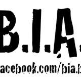 B.I.A. - Kaminfeuer