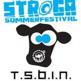 TSBiN @ Stroga Festival 2015