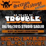 SECTION GRABUGE vs BLACK MAMBA Liveset @ 33 YEARS OF TROUBLE 6.6.2oI5