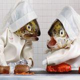 Rachel Mason on Kettle of Fish