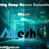 Va -Spring Deep House Sensations