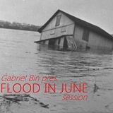 Flood in June session (Live mix 20.06.13.)