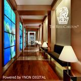 Hotel Ritz Carlton Hertzlia Terrace Mix