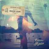 Bagage Radio Episode #033 - Mixed by Mood HSM (Playa del Carmen / Spinny Grooves)