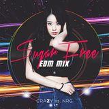 Sugar Free EDM Mix - craZy vs NRG