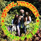 ISRAEL VIBRATION STRENGTH OF MY LIFE plus DUBS