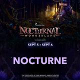 Nocturnal Wonderland Practice Set #1