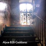 Alyce (Lumen) B2B Caddarac