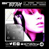 BINARY MIX @ LaBonneNouvelle mixed by BlackTheDog (Rennes- 2012)