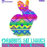 Rabbits Eat Lettuce Festival - Fish Bowl Stage 19.04.14