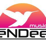 eNDee house music vol.10 Club Edition cd 2