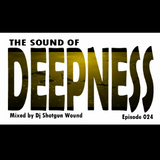 SGW The Sound Of Deepness Episode 24