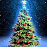 CHRISTMAS TRAP SET 06 | FranzMack