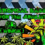 Winick - Tropical Bass for the Junglist