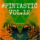 #Pintastic Vol.12