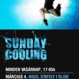 Nigel Stately b2b Tigran - Live @ Coronita Club Budapest Sunday Cooling 2012.03.04.