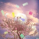 dice:: Spring Theory 2