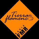 Tierra flamenca - mars 2017 - Invité Joss Rodriguez et présentation du Festival flamenco de Toulouse