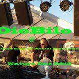 DieBilo @ SHG 7 meets Dark Signs & Mental Destruction Bootcamp on Nature One 2013 (1)