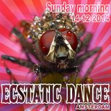 Ecstatic Dance Amsterdam - Sunday morning - Dj Martyn Zij - 14-12-2014