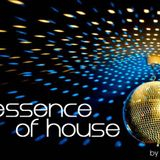 the essence of house