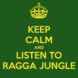 3h Ragga Jungle Mix