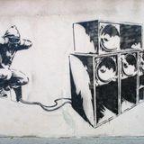 DJ Schranzwahn - Hardtechno (X - Mas '12) Set