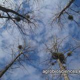 Agriculture et forêt : à l'orée de nouvelles relations ?