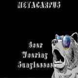 Metacarpus - Bear Wearing Sunglasses [TECHNO & MINIMAL MIX 2013_06_13]
