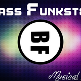 Bass Funkster's Musical Freedom 2013