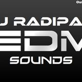 DJ Radipax - EDM Sounds