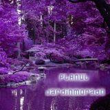 PLANUL - JardinMorado